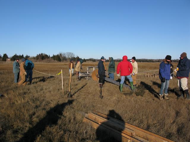 Osprey Platform - Jan 15, 2012 - IMG_8576.JPG