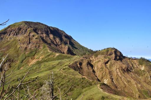 苗場山への稜線