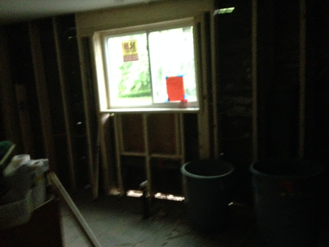 Renovation Project - IMG_0192.JPG