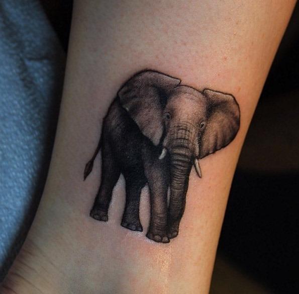 Este adorável elefante tatuagem no tornozelo