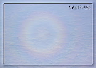 Photo: rund regnbåge över atlanten - circle shaped rainbow over the atlantic ocean http://nfbild2.blogspot.com/2011/02/swf-regnbage-rainbow.html
