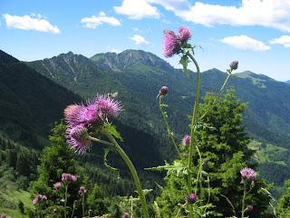 San Colombano - Alta Val Trompia