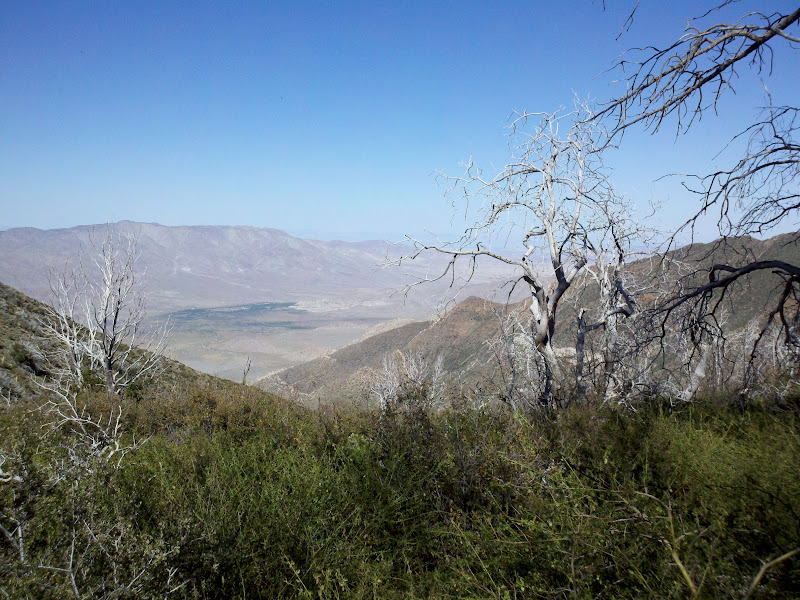 Mount Laguna Bicycle Classic • View of Anza Borrego Desert