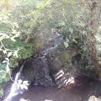 Skookumchuck River 2012 - DSCF1761.JPG