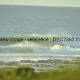 _DSC7392.thumb.jpg