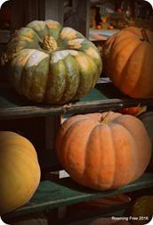 Vintage Pumpkins