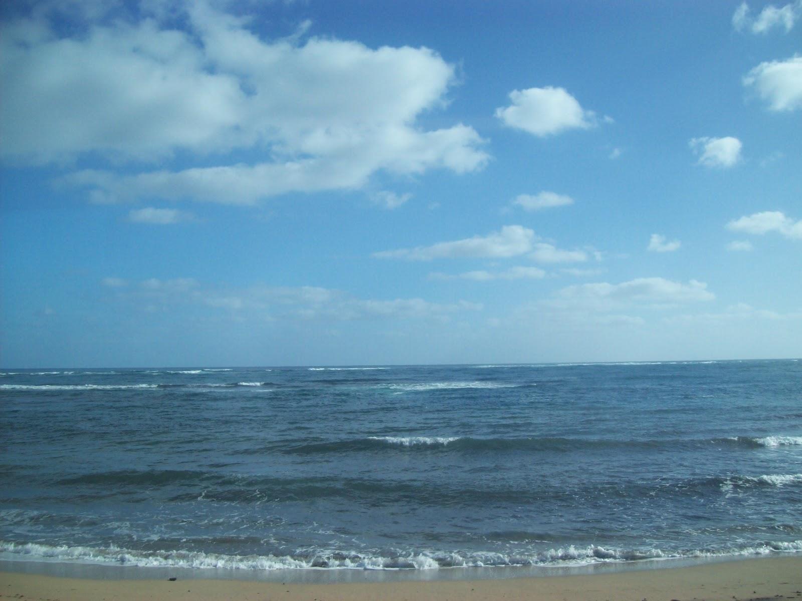 Hawaii Day 3 - 100_6916.JPG