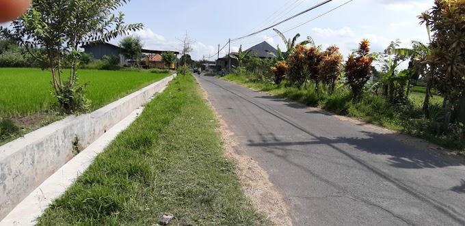 Tanah Murah Strategis Pinggir Jalan Utara Pasar Tanjung Berbah Sleman
