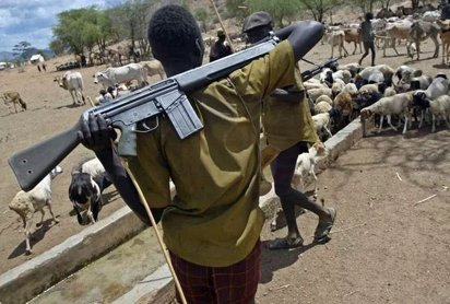 BREAKING: Suspected herdsmen attack villages in Adamawa