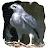 Steve Pierce avatar image