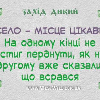Українські анекдоти, які зігріють в будь-який день