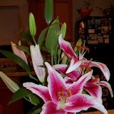 Bouquets - 101_0097.JPG