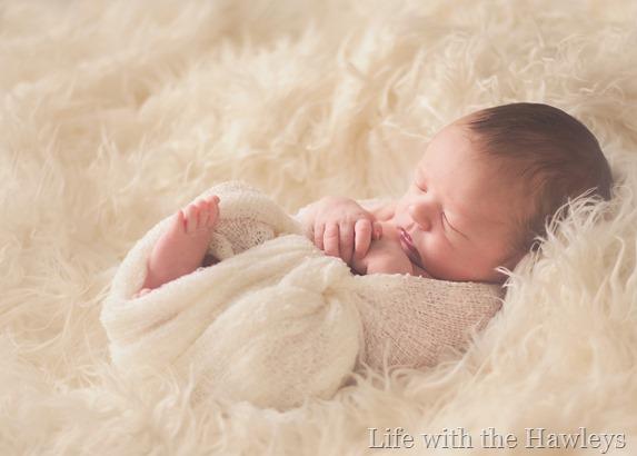 Dutch Newborn_2014_03