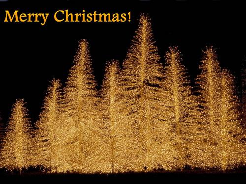 Christmas  Image - 1