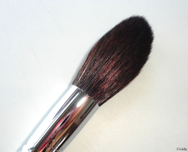 Sigma Beauty Highlight Expert Brush Set Review 6