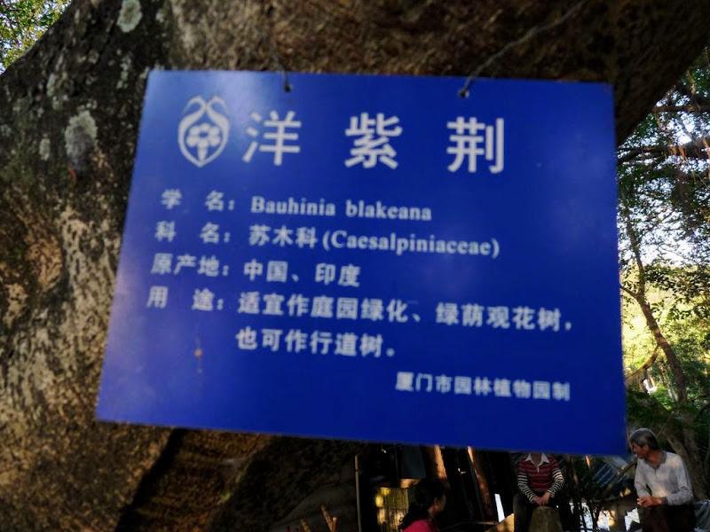 CHINE, Fujian,Xiamen et Tou lou 1 - P1010587.JPG