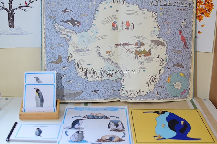 Montessori Inspired Penguin Unit for Preschoolers