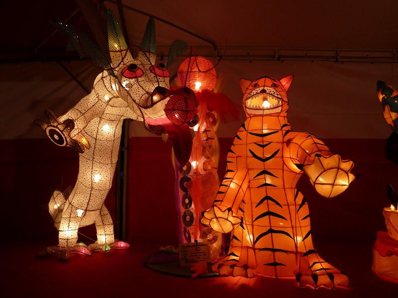 Taiwan .Taipei Lantern Festival - P1150882.JPG