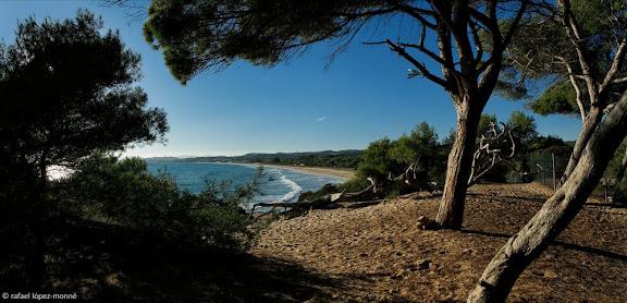 Platja Llarga des de la Punta de la Creueta. Espai natural del Bosc de la Marquesa.Tarragona, Tarragonès, Tarragona