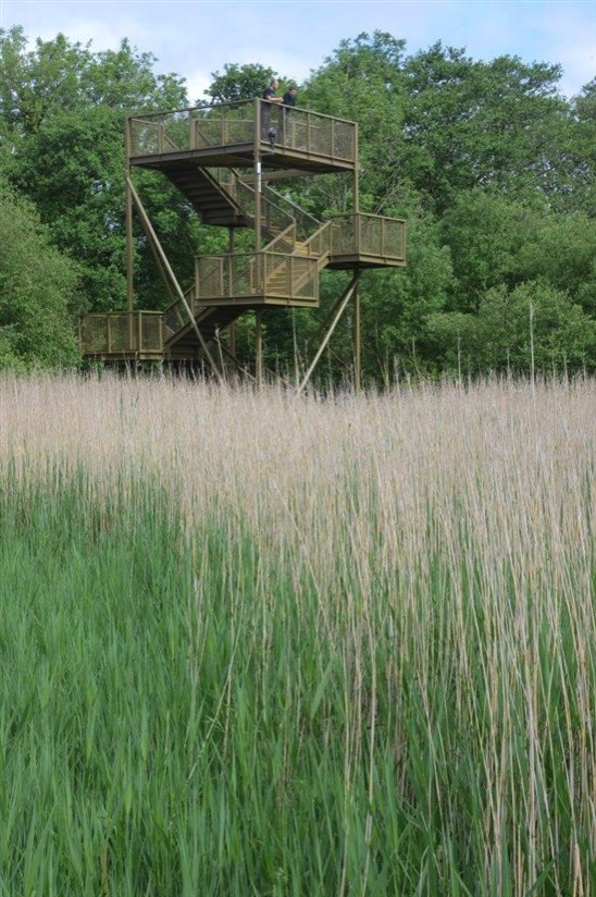RSPB Leighton Moss Skytower  David Mower LOW RES jpg 550x0