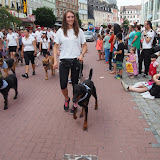 Volksfestumzug BPSV Hof 2015 - P7240074.JPG