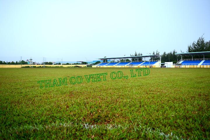 Sân cỏ tự nhiên