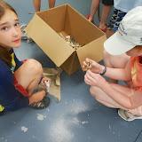 July Summer Programs, 2013 - DSCN2106.JPG