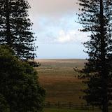 hawaii - 4.jpg