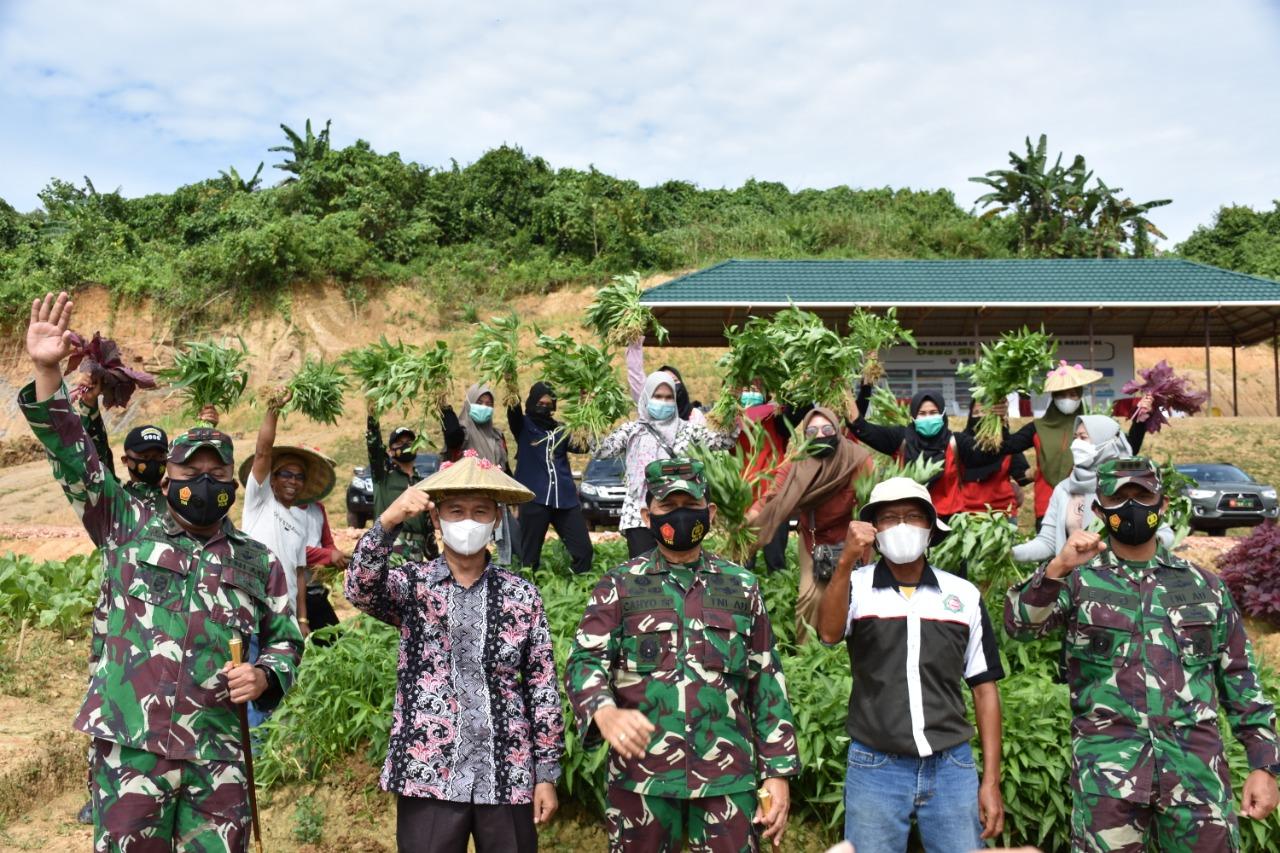 Danrem 091/ASN dan Dandim Tenggarong Panen Perdana di Desa Sinergi Hijau