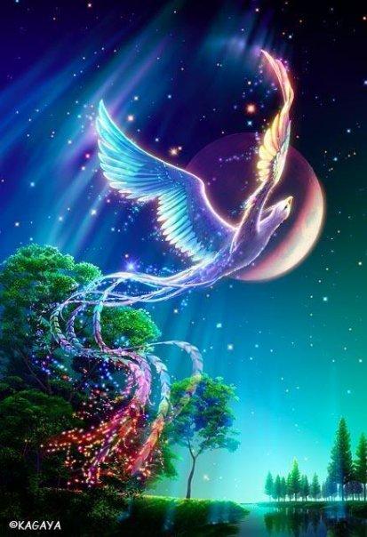 Magic Phoenix, Magic And Spells