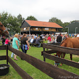 Paard & Erfgoed 2 sept. 2012 (52 van 139)