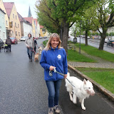 20130507 Erlebnisgruppe Di Erbendorf - 2013-05-07%2B19.27.50.jpg