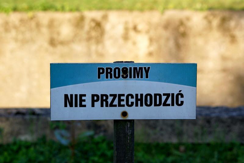 Warszawskie ZOO - DSC05024.JPG