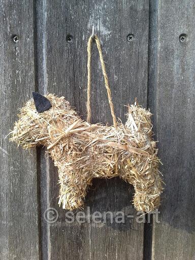 Cairn Terrier van hooi 1.jpg