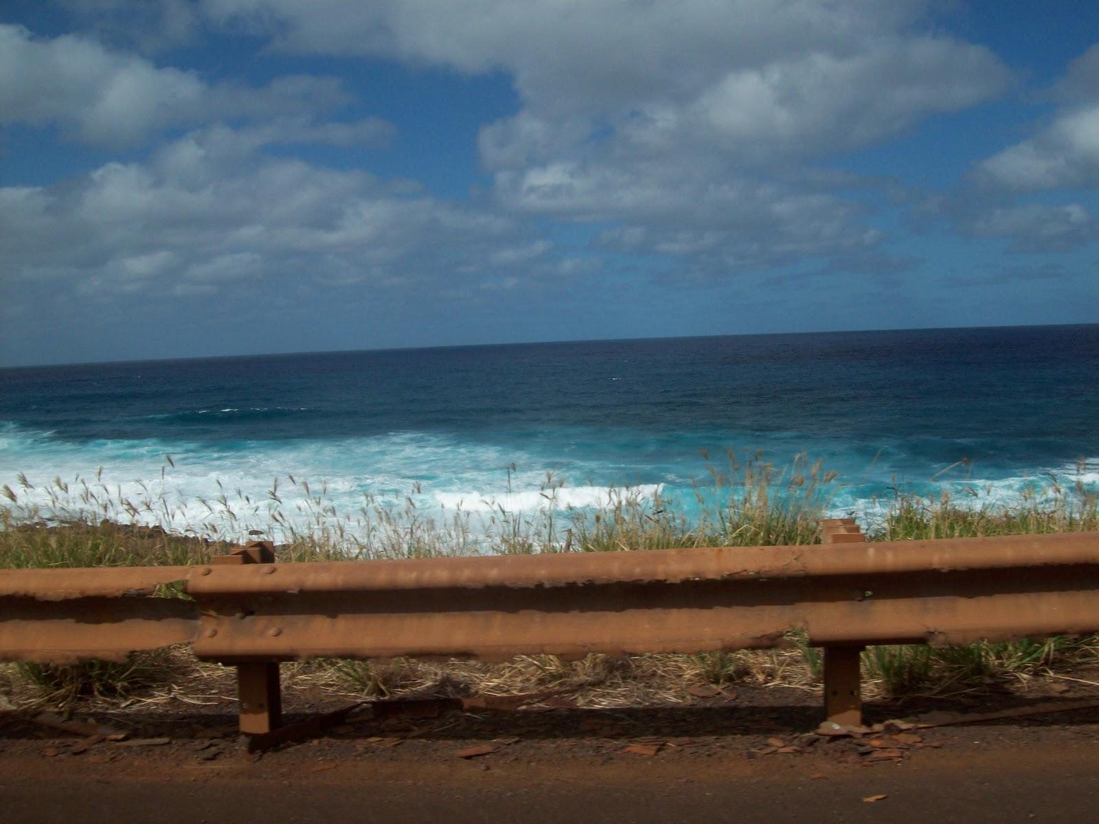 Hawaii Day 5 - 114_1616.JPG