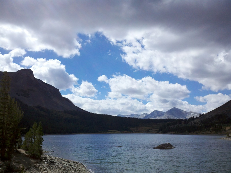 High Sierra • Tioga Lake