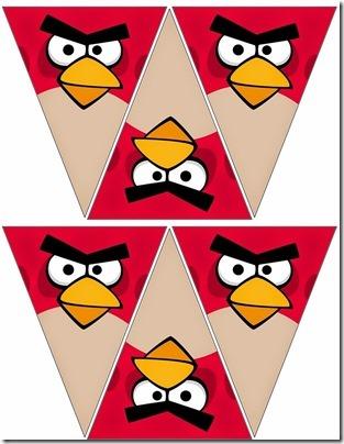 angry_bird cumpleaños (3)
