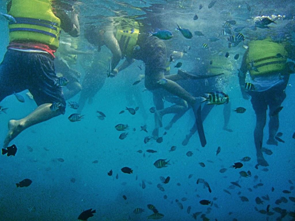 ngebolang-pulau-harapan-14-15-sep-2013-olym-34