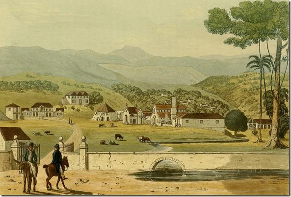 Montpelier Estate St. James, The property of C.R. Ellis, Esq. M.P.