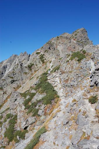 下ってきた登山道