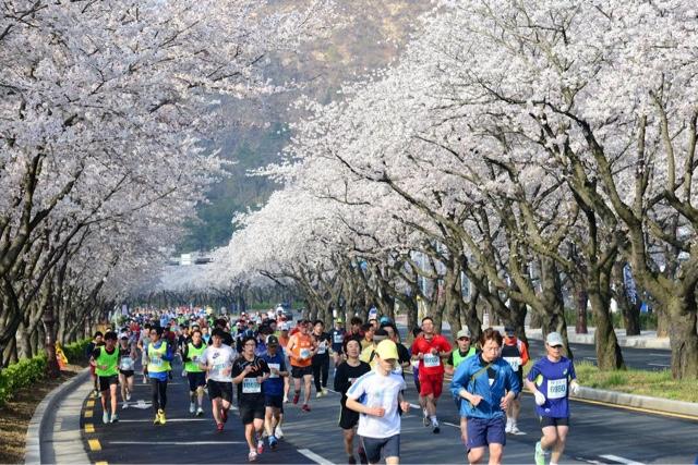 marathon korea
