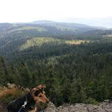 Ausflugsfahrt in den Bayerischen Wald: 19. Juli 2015 - IMG_1825.JPG