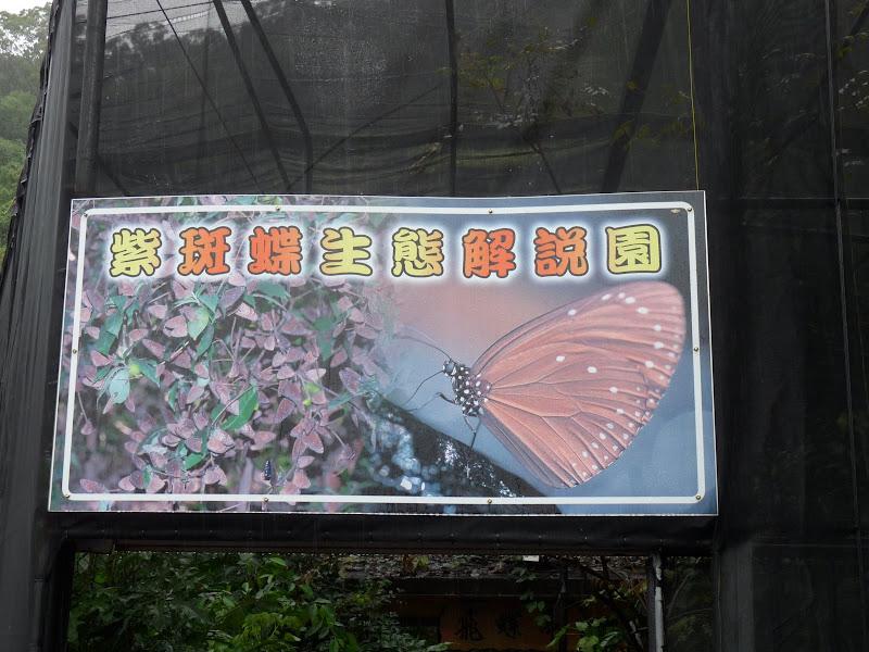 TAIWAN. Cinq jours en autocar au sud de Taiwan. partie 1 - P1150716.JPG