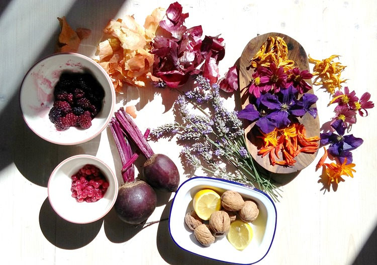 fruits veggies and flowers for natural dyeing