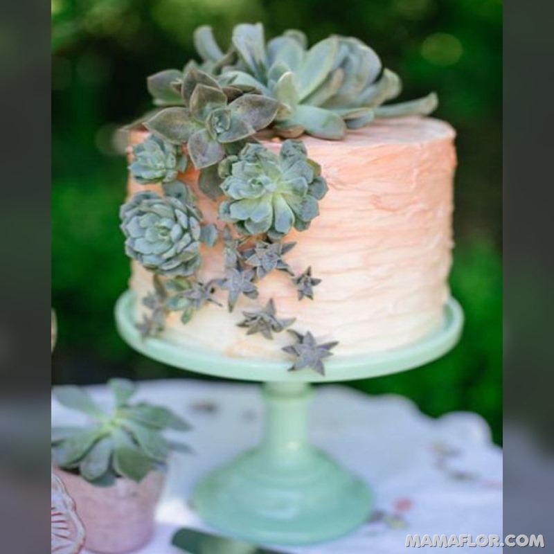 Centros-de-mesa-para-Boda-con-cactus-y-suculentas---11