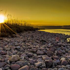 Sunset at Beas by Akash Deep - Landscapes Sunsets & Sunrises ( sunset at beas, river side sunset, waterscape, sunset view, beas view, beas at hamirpur, sunset landscape, golden hour )
