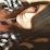 Chloe Kristee Leigh's profile photo