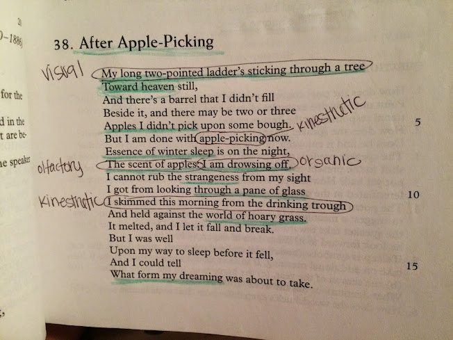 an analysis and an interpretation of after apple picking In the poem after apple-picking, robert frost has cleverly disguised many  symbols and allusions to enhance the meaning of the poem one must  understand.