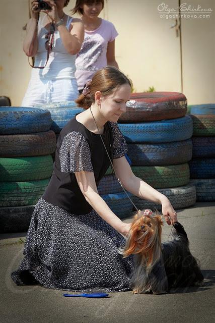 Перово 18.05.2013 (фото) 6K9B8627