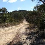 The Oaks Fire Trail (74568)